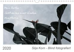 Silja Korn – Blind fotografiert (Wandkalender 2020 DIN A4 quer) von Korn,  Silja