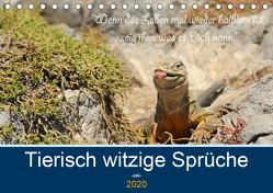 Sind Tiere die weiseren Menschen? Tierisch witzige Sprüche (Tischkalender 2020 DIN A5 quer) von Skrypzak,  Rolf