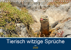 Sind Tiere die weiseren Menschen? Tierisch witzige Sprüche (Wandkalender 2020 DIN A4 quer) von Skrypzak,  Rolf
