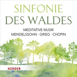 Sinfonie des Waldes