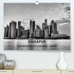 Singapur – Impressionen in schwarz – weiss (Premium, hochwertiger DIN A2 Wandkalender 2020, Kunstdruck in Hochglanz) von Wittstock,  Ralf