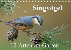 Singvögel – 12 Arten im Garten (Tischkalender 2019 DIN A5 quer) von birdimagency,  BIA