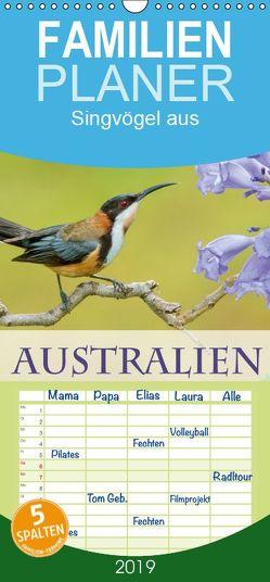 Singvögel aus Australien – Familienplaner hoch (Wandkalender 2019 , 21 cm x 45 cm, hoch) von birdimagency,  BIA