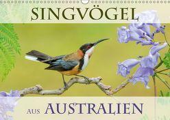 Singvögel aus Australien (Wandkalender 2019 DIN A3 quer) von birdimagency,  BIA