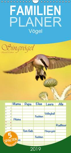 Singvögel – Familienplaner hoch (Wandkalender 2019 , 21 cm x 45 cm, hoch) von Brandmeier,  Wolfgang