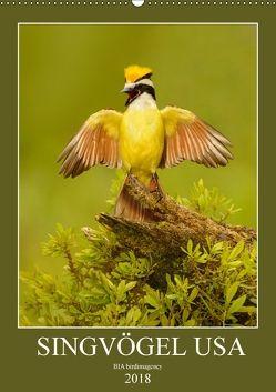 Singvögel USA (Wandkalender 2018 DIN A2 hoch) von birdimagency,  BIA