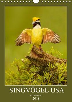 Singvögel USA (Wandkalender 2018 DIN A4 hoch) von birdimagency,  BIA