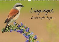 Singvögel – Zauberhafte Sänger (Wandkalender 2018 DIN A3 quer) von Ottmann,  Daniel