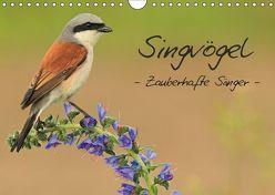 Singvögel – Zauberhafte Sänger (Wandkalender 2019 DIN A4 quer) von Ottmann,  Daniel
