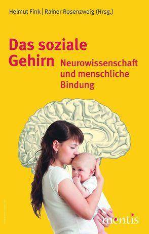 Sinne, Gehirn und Geist von Fink,  Helmu, Rosenzweig,  Rainer