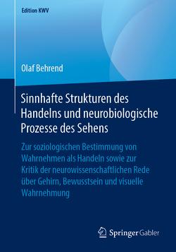 Sinnhafte Strukturen des Handelns und neurobiologische Prozesse des Sehens von Behrend,  Olaf