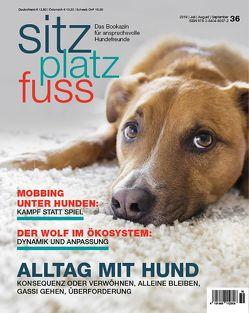 SitzPlatzFuss, Ausgabe 36 von Cadmos Verlag