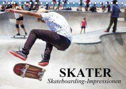 Skater. Skateboarding-Impressionen (Tischkalender 2019 DIN A5 quer) von Stanzer,  Elisabeth
