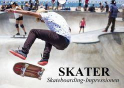 Skater. Skateboarding-Impressionen (Wandkalender 2019 DIN A4 quer) von Stanzer,  Elisabeth