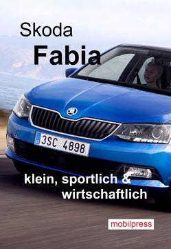 Skoda Fabia von Zimmermann,  Gerd