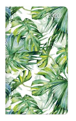 Slimtimer Dschungel 2020 – Taschenplaner – Taschenkalender (9 x 16) – Weekly – 128 Seiten – Terminplaner – Notizbuch von ALPHA EDITION