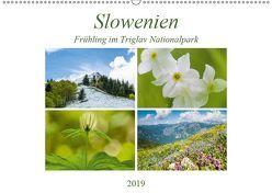 Slowenien – Frühling im Triglav Nationalpark (Wandkalender 2019 DIN A2 quer) von Fuck - FF-Photoart,  Frauke