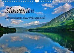 Slowenien – Impressionen eines Naturjuwels (Wandkalender 2019 DIN A4 quer) von Plastron Pictures,  Lost