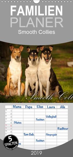 Smooth Collies – Familienplaner hoch (Wandkalender 2019 , 21 cm x 45 cm, hoch) von Längsfeld,  Laura