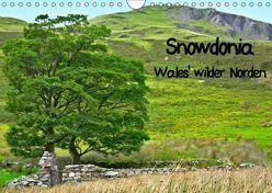 Snowdonia – Wales' wilder Norden (Wandkalender 2019 DIN A4 quer) von Plastron Pictures,  Lost