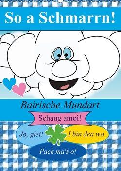 So a Schmarrn! Bairische Mundart (Wandkalender 2018 DIN A2 hoch) von Stanzer,  Elisabeth