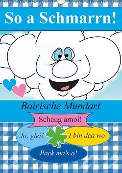 So a Schmarrn! Bairische Mundart (Wandkalender 2018 DIN A3 hoch) von Stanzer,  Elisabeth