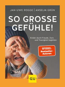 So große Gefühle! von Grün,  Anselm, Rogge,  Jan-Uwe
