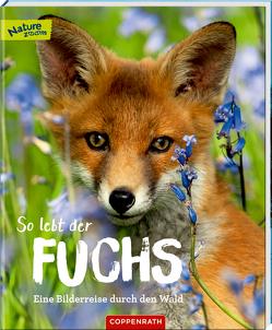 So lebt der Fuchs von Noa,  Sandra