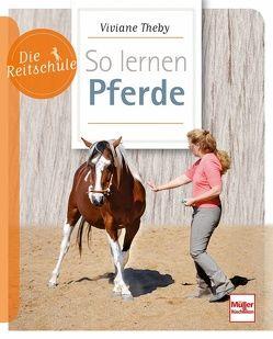 So lernen Pferde von Theby,  Viviane
