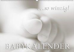 …so winzig – Babykalender (Wandkalender 2019 DIN A2 quer) von W. Lambrecht,  Markus