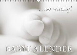 …so winzig – Babykalender (Wandkalender 2019 DIN A3 quer) von W. Lambrecht,  Markus
