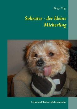 Sokrates – der kleine Mickerling von Vogt,  Birgit