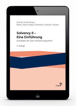 Solvency II – Eine Einführung von Gründl,  Helmut, Kraft,  Mirko, Pelzer,  Sabine, Post,  Thomas, Schlütter,  Sebastian, Schulze,  Roman N., Vievers,  Claudius