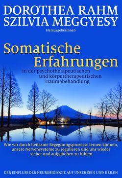Somatische Erfahrungen in der psychotherapeutischen und körpertherapeutischen Traumabehandlung von Meggyesy,  Szilvia, Rahm,  Dorothea