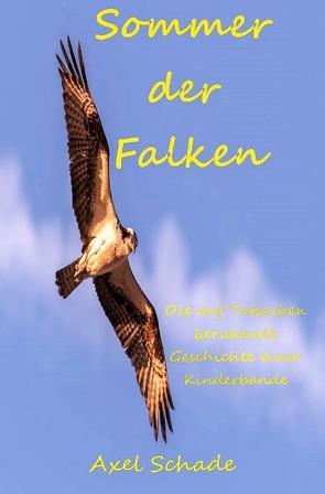 Sommer der Falken von Schade,  Axel