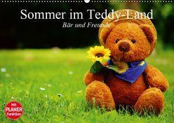 Sommer im Teddy-Land. Bär und Freunde (Wandkalender 2019 DIN A2 quer) von Stanzer,  Elisabeth