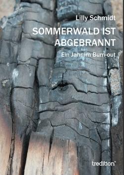 Sommerwald ist abgebrannt von Schmidt,  Lilly