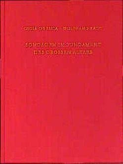 Sondagen im Fundament des Großen Altars von DeLuca,  Gioia, Radt,  Wolfgang