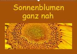 Sonnenblumen – ganz nah (Wandkalender 2019 DIN A2 quer) von Vorndran,  Hans-Georg