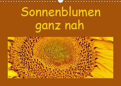 Sonnenblumen – ganz nah (Wandkalender 2019 DIN A3 quer) von Vorndran,  Hans-Georg