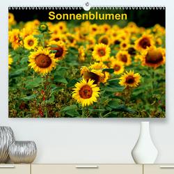 Sonnenblumen (Premium, hochwertiger DIN A2 Wandkalender 2021, Kunstdruck in Hochglanz) von Schulz,  Dorothea