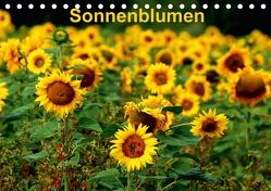 Sonnenblumen (Tischkalender 2018 DIN A5 quer) von Schulz,  Dorothea
