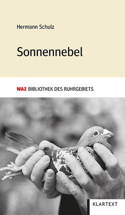 Sonnennebel von Schulz,  Hermann