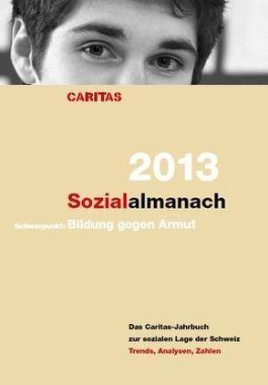 Sozialalmanach 2013 von Heggli,  Regula, Meyer,  Iwona