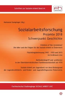 Sozialarbeitsforschung Projekte 2018 von Gumpinger,  Marianne