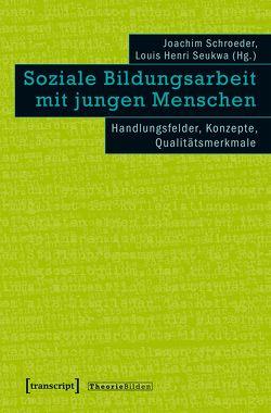 Soziale Bildungsarbeit für junge Menschen von Schroeder,  Joachim, Seukwa,  Louis Henri