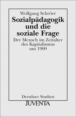 Sozialpädagogik und die soziale Frage von Schröer,  Wolfgang