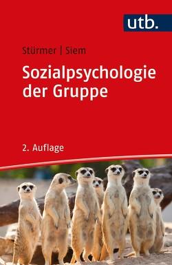 Sozialpsychologie der Gruppe von Siem,  Birte, Stürmer,  Stefan