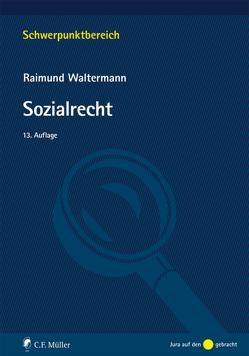 Sozialrecht von Waltermann,  Raimund