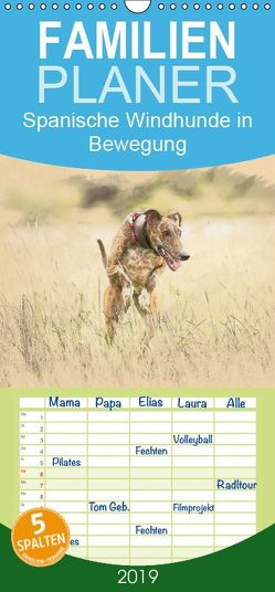 Spanische Windhunde in Bewegung – Familienplaner hoch (Wandkalender 2019 , 21 cm x 45 cm, hoch) von Redecker,  Andrea